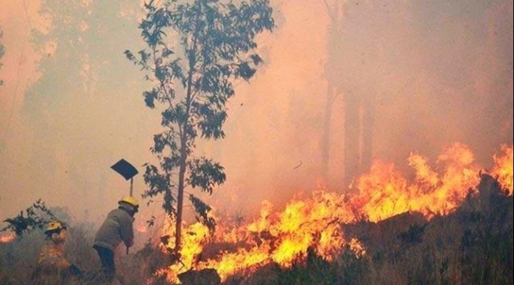 Tras lluvias, los incendios en Santa Cruz persisten sólo en dos municipios