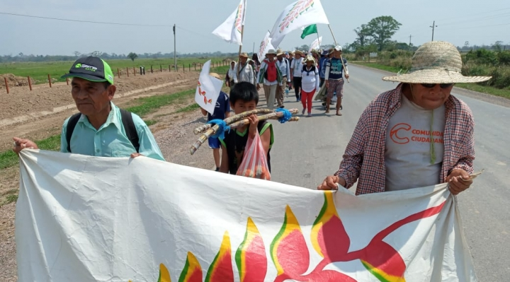 Gobierno resta credibilidad a la marcha indígena y alienta división interna para disolverla