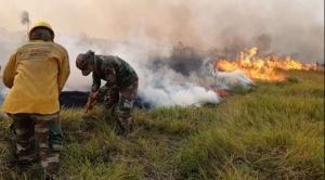 """El fuego ya consumió 717.985 hectáreas y el Gobierno anuncia """"ataque"""" con cuatro avionetas desde mañana"""