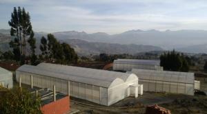 Orkidea Andina lanzará iniciativa agraria para familias del Altiplano