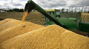 Productores de soya en Santa Cruz podrán asegurar sus cultivos