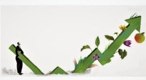 Brújula Digital ofrece un nuevo producto a sus lectores: el blog Visión Sostenible