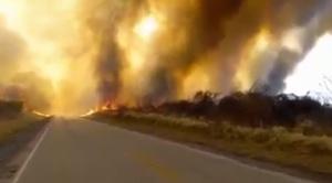 Incendio en Roboré amenaza la línea férrea y tendido eléctrico