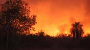FAN registra 2.594 focos de calor en el departamento de Santa Cruz