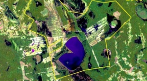 INRA demanda a familia Marinkovic ante el Tribunal Agroambiental para revertir tierras
