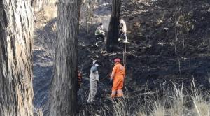 Alcaldía sostiene que si encuentra al que provocó el incendio en Pura Pura se lo sancionará