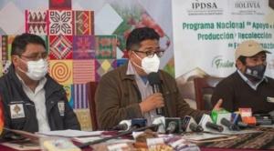 Gobierno abre unos 16 procesos para revisar titulación de tierras en gestión de Añez