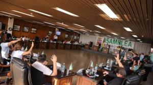 """Senado impugna ley """"separatista"""" cruceña para designación de autoridades regionales 1"""