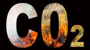 ¿Qué pasa cuando escasea el CO2 y por qué no se puede usar el que sobra y daña el medio ambiente?