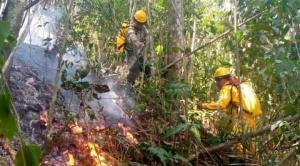 Incendio forestal en El Madidi bajo control, se espera sofocarlo en las próximas horas