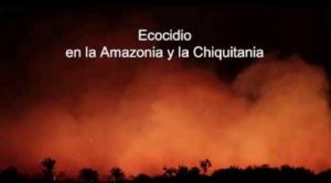 Comisión internacional de expertos visitará región de la Chiquitanía afectada por incendios