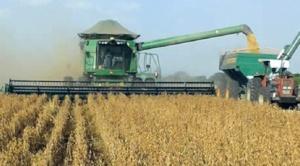 Además del coronavirus, uso de biotecnología en actividad del agro entra en el debate nacional