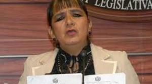 Senadora Gonzales presenta recurso de inconstitucionalidad contra la ley que fija fecha de elecciones 1
