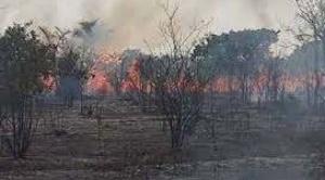 Incendios devoran unas 4.000 hectáreas del Parque Noel Kempff Mercado