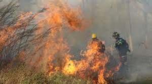 Gobernación de Santa Cruz emite declaratoria de Emergencia Departamental por incendios
