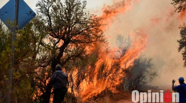 Reportan incendio en el parque Tunari, en Cochabamba